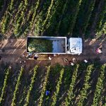 Rael-Petit-Mixes-for-President-of-Bolivia-overhead-view-of-field-and-family