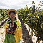 bolivian-woman-with-singani-63-bottle-in-field